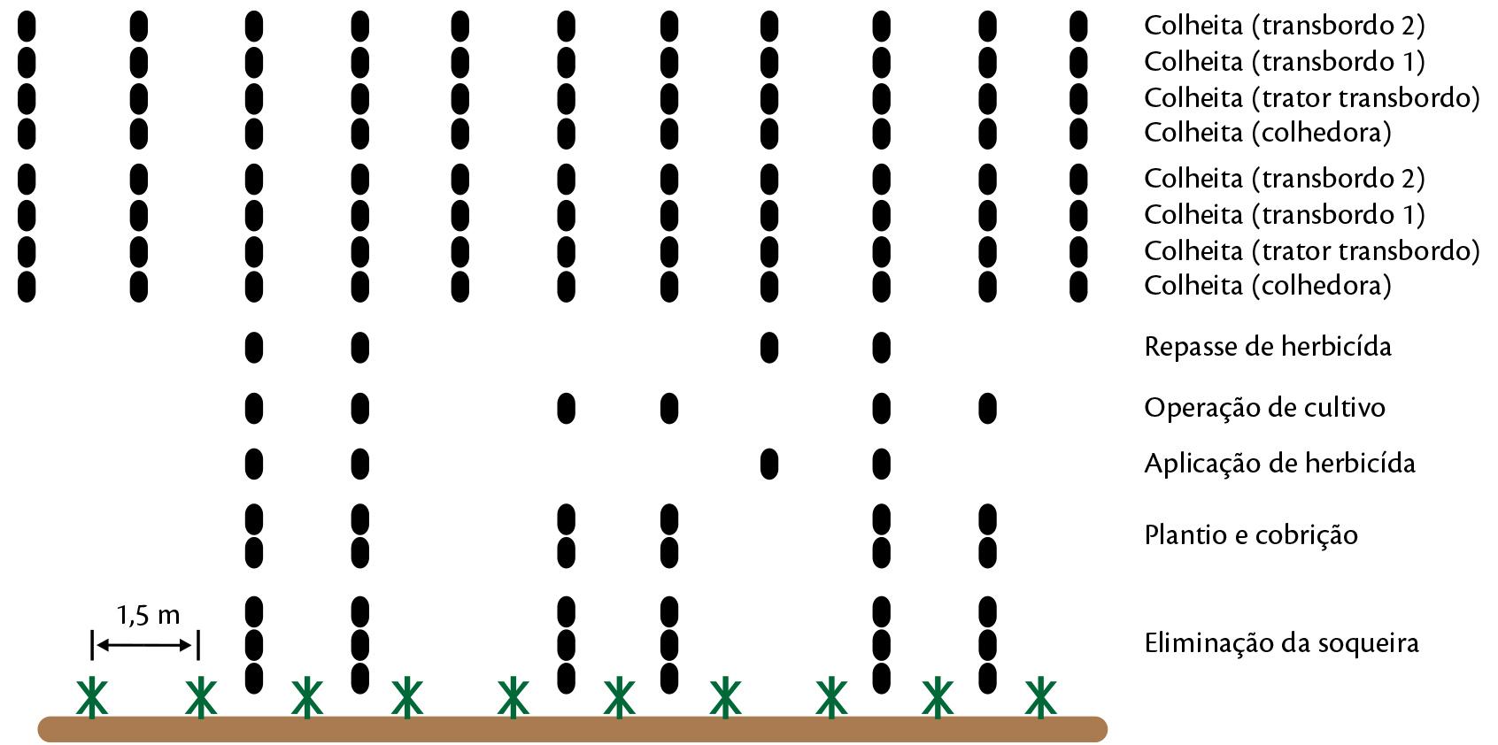Número de passadas de pneus nas entrelinhas de plantio da cana-de-açúcar na mecanização convencional com controle de tráfego