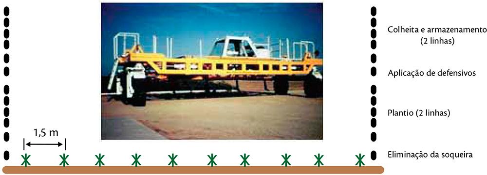 Número de passadas de pneus nas entrelinhas de plantio da cana-de-açúcar no esquema de mecanização com estruturas de tráfego controlado (ETC)