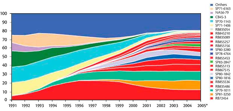 Evolução do uso de variedades de cana no Brasil. Fonte: CanaVialis (2007)